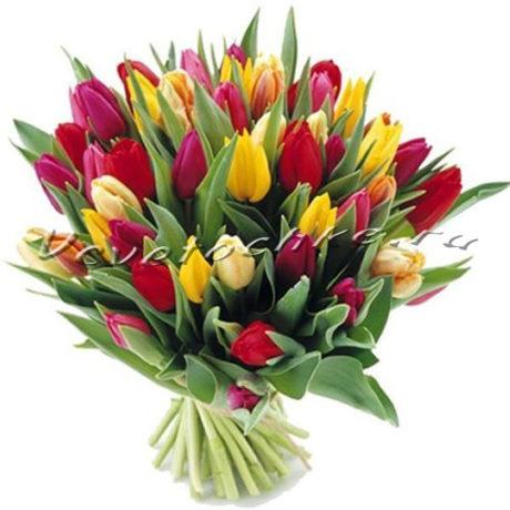 доставка цветов Москва, цветы Москва, купить цветы в Москве, цветы недорого Москва, заказать цветы Москва, цветы, Москва, доставка, тюльпаны, букет тюльпанов, букет, 31 разноцветных тюльпанов