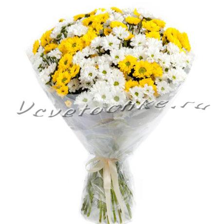 доставка цветов Москва, цветы Москва, купить цветы в Москве, цветы недорого Москва, заказать цветы Москва, цветы, Москва, доставка, хризантема, белая хризантема, желтая хризантема