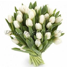 доставка цветов Москва, цветы Москва, купить цветы в Москве, цветы недорого Москва, заказать цветы Москва, цветы, Москва, доставка, тюльпаны, белые тюльпаны, букет тюльпанов