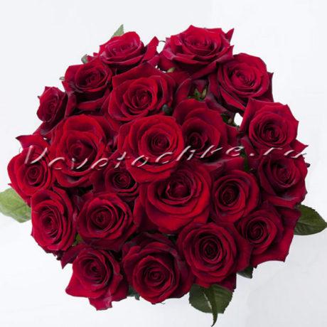 доставка цветов Москва, цветы Москва, купить цветы в Москве, цветы недорого Москва, заказать цветы Москва, цветы, Москва, доставка, красная роза, 21 красная роза, букет, букет красных роз