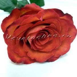 доставка цветов Москва, цветы Москва, купить цветы в Москве, цветы недорого Москва, заказать цветы Москва, цветы, Москва, доставка, роза поштучно, оранжевая роза поштучно