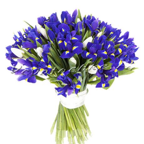 доставка цветов Москва, цветы Москва, купить цветы в Москве, цветы недорого Москва, заказать цветы Москва, цветы, Москва, доставка, ирисы, букет, букет ирисов
