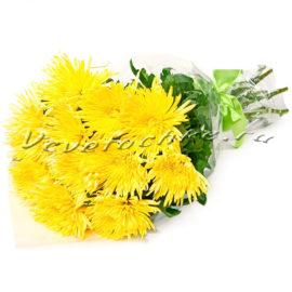 доставка цветов Москва, цветы Москва, купить цветы в Москве, цветы недорого Москва, заказать цветы Москва, цветы, Москва, доставка, хризантема, одноголовая хризантема, букет хризантем