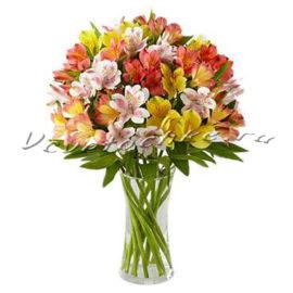 доставка цветов Москва, цветы Москва, купить цветы в Москве, цветы недорого Москва, заказать цветы Москва, цветы, Москва, доставка, альстромерия, букет альстромерий
