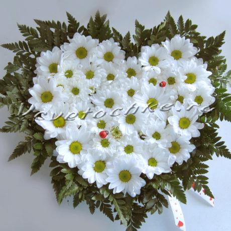 доставка цветов Москва, цветы Москва, купить цветы в Москве, цветы недорого Москва, заказать цветы Москва, цветы, Москва, доставка, композиция, хризантема, композиция из хризантем, сердце хризантем