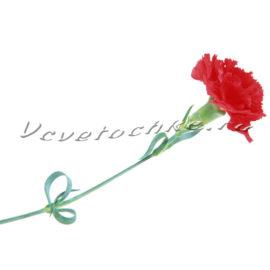 доставка цветов Москва, цветы Москва, купить цветы в Москве, цветы недорого Москва, заказать цветы Москва, цветы, Москва, доставка, гвоздика, красная гвоздика