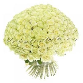 доставка цветов Москва, цветы Москва, купить цветы в Москве, цветы недорого Москва, заказать цветы Москва, цветы, Москва, доставка, роза, белая роза, 201 роза, 201 белая роза, букет роз, vip