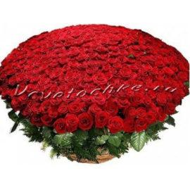 доставка цветов Москва, цветы Москва, купить цветы в Москве, цветы недорого Москва, заказать цветы Москва, цветы, Москва, доставка, роза, красная роза, 301 роза, 301 красная роза, букет роз, vip