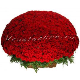 доставка цветов Москва, цветы Москва, купить цветы в Москве, цветы недорого Москва, заказать цветы Москва, цветы, Москва, доставка, роза, красная роза, 1001 роза, 1001 красная роза, букет роз, vip