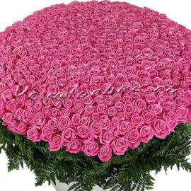 доставка цветов Москва, цветы Москва, купить цветы в Москве, цветы недорого Москва, заказать цветы Москва, цветы, Москва, доставка, роза, розовая роза, 1001 роза, 1001 розовая роза, букет роз, vip