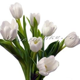 доставка цветов Москва, цветы Москва, купить цветы в Москве, цветы недорого Москва, заказать цветы Москва, цветы, Москва, доставка, букет, тюльпаны, белые тюльпаны, 7 тюльпанов, букет тюльпанов