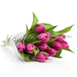 доставка цветов Москва, цветы Москва, купить цветы в Москве, цветы недорого Москва, заказать цветы Москва, цветы, Москва, доставка, букет, тюльпаны, фиолетовые тюльпаны, 11 тюльпанов
