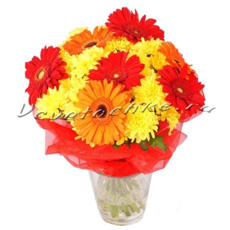 доставка цветов Москва, цветы Москва, купить цветы в Москве, цветы недорого Москва, заказать цветы Москва, цветы, Москва, доставка, букет, гербера, разноцветная гербера, хризантема, кустовая хризантема