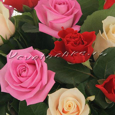 доставка цветов Москва, цветы Москва, купить цветы в Москве, цветы недорого Москва, заказать цветы Москва, цветы, Москва, доставка, букет, роза, разноцветная роза, букет роз, роза Москва