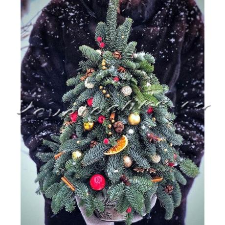 доставка цветов Москва, цветы Москва, купить цветы в Москве, цветы недорого Москва, заказать цветы Москва, цветы, Москва, доставка, новый год, новогодние композиции, композиции, новый, елка, елочка, рождественская сказка, сказка
