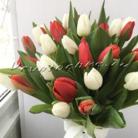 доставка цветов Москва, цветы Москва, купить цветы в Москве, цветы недорого Москва, заказать цветы Москва, цветы, Москва, доставка, букет, тюльпаны, букет из тюльпанов, 31 тюльпан, белые тюльпаны