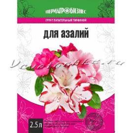 доставка цветов Москва, цветы Москва, купить цветы в Москве, цветы недорого Москва, заказать цветы Москва, цветы, Москва, доставка, грунт купить, грунт торфяной, грунт для азалий, азалия, гортензия