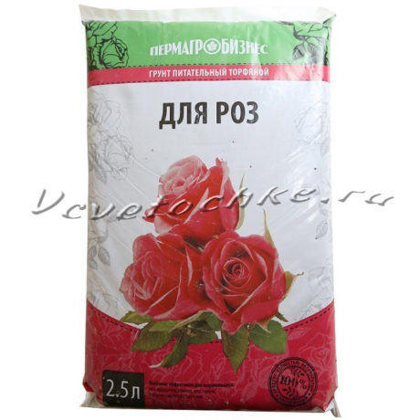 доставка цветов Москва, цветы Москва, купить цветы в Москве, цветы недорого Москва, заказать цветы Москва, цветы, Москва, доставка, грунт купить, грунт торфяной, грунт для роз, роза, горшечная роза