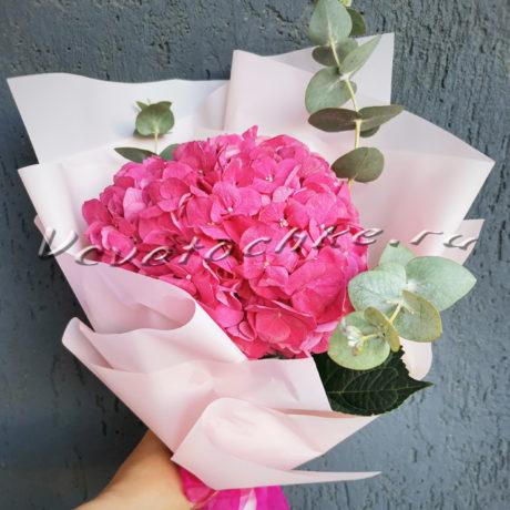 доставка цветов Москва, цветы Москва, купить цветы в Москве, цветы недорого Москва, заказать цветы Москва, цветы, Москва, доставка, гортензия, букет из гортензии