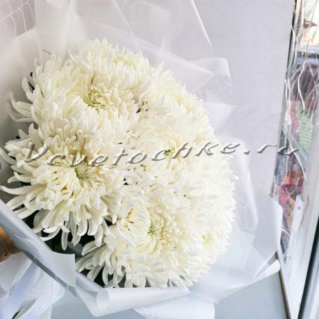 доставка цветов Москва, цветы Москва, купить цветы в Москве, цветы недорого Москва, заказать цветы Москва, цветы, Москва, доставка, букет, хризантема, белая хризантема, одноголовая хризантема